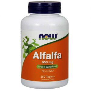 אלפלפא | אספסת | Medicago sativa | Alfalfa מחוזקת